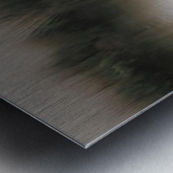 ... Metal print
