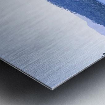 Secret View Metal print