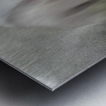 Impression by milan malovrh  Metal print