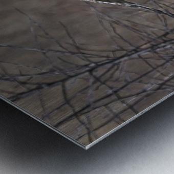 Wesley Allen Shaw 02102 Metal print