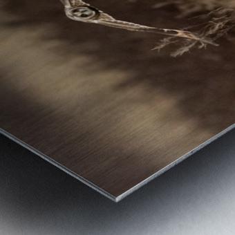 Wesley Allen Shaw 02245 Metal print