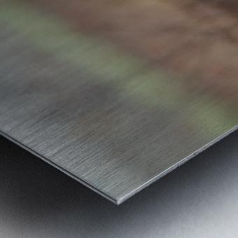 Wesley Allen Shaw 02128 Metal print