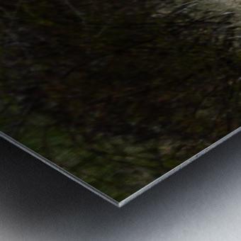 Wesley Allen Shaw 01906 1609735001.972 Metal print