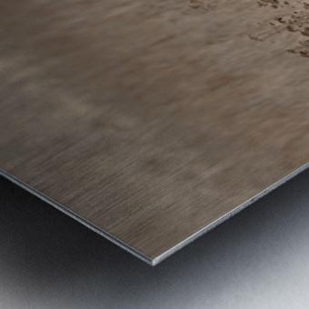 Wesley Allen Shaw 01435 Metal print