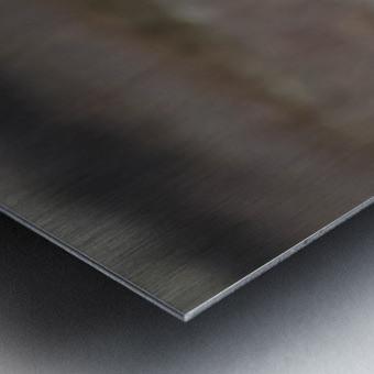 Wesley Allen Shaw 02353 Metal print