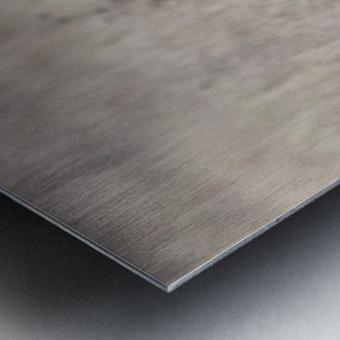 Wesley Allen Shaw 09335 Metal print
