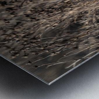 Wesley Allen Shaw 09496 Metal print