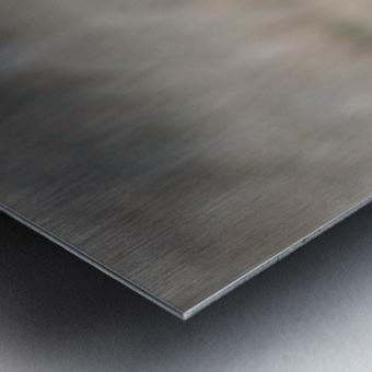 Wesley Allen Shaw 09384 Metal print