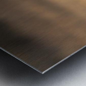 Wesley Allen Shaw 08720 Metal print
