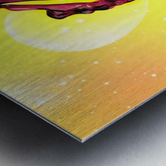 MG 1588 Metal print