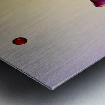 MG 1626 Metal print