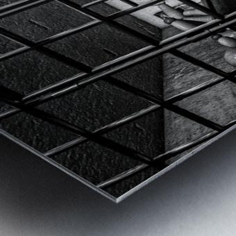 Cell Mates Metal print