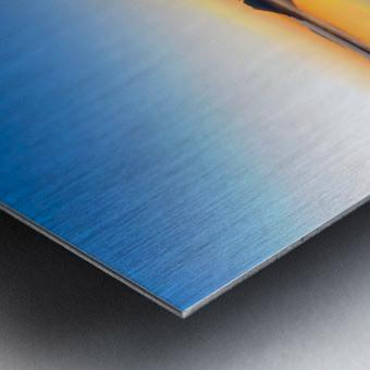20181211 IMG 2916 Metal print