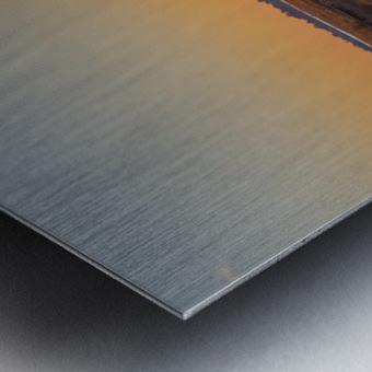 20190101 DSC 0140 4 Metal print
