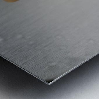 20200314 DSC 0071 Metal print