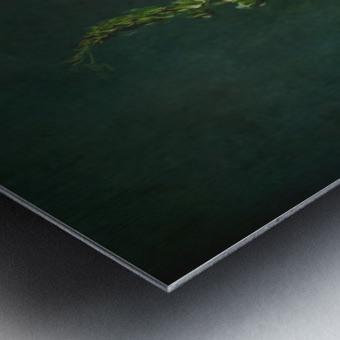 Etude Zen 3m Metal print