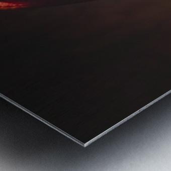 Etude Zen 3g Metal print