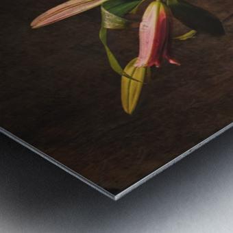 Etude Zen 3i Metal print