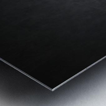 Etude Zen 3l Metal print