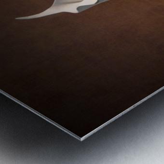 Etude Zen 7b Metal print