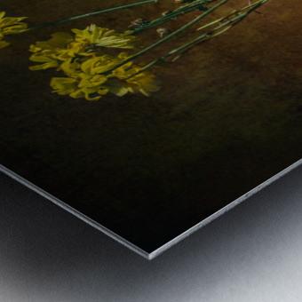 Etude Zen 7c Metal print