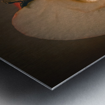 Etude Zen 7d Metal print