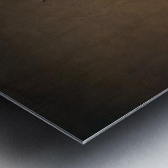 Etude Zen 7d suite Metal print