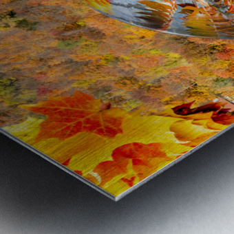 Abstract - Autumn II Metal print