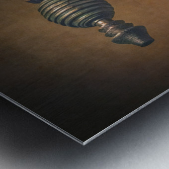 Steampunk 1 Metal print