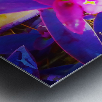 pink and purple Metal print