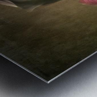 Etude Zen 8 a Metal print