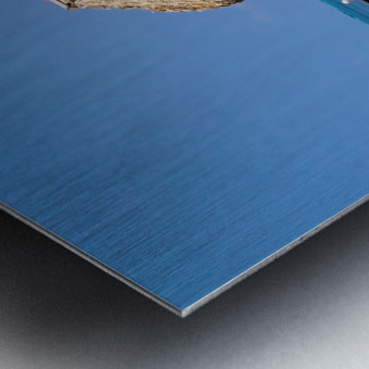 Ambergris Caye 2 Metal print