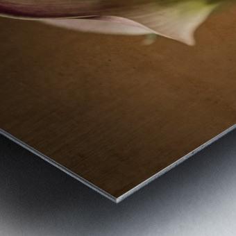 Etude Zen 8 b Metal print