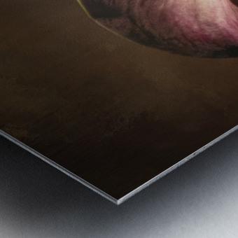 Etude Zen 8 e Metal print