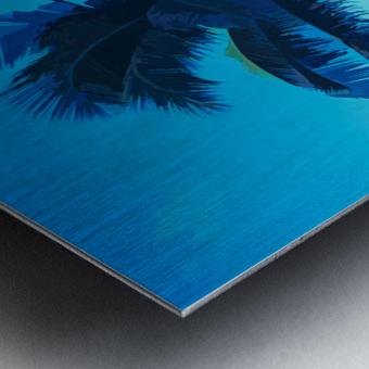 palm color 6 Metal print