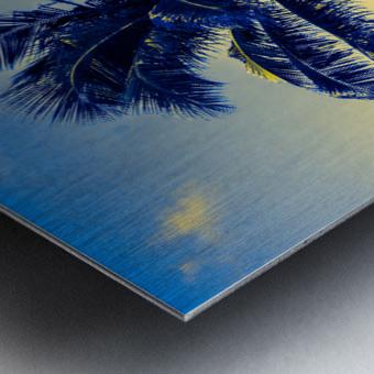 palm color 4 Metal print