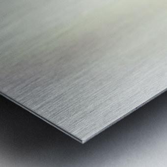 Aurore boreale 2 Metal print