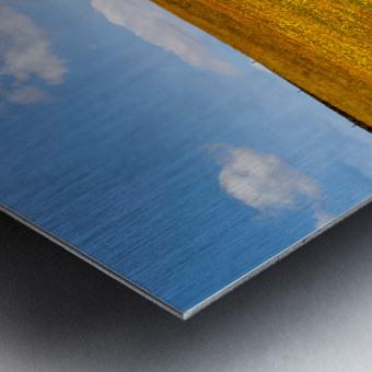 Donegal 24 Metal print