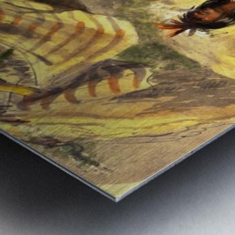 Pawnee Indian Camp Metal print