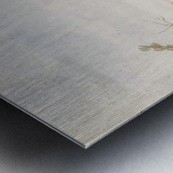 Antelope Metal print