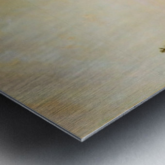 A surround Metal print