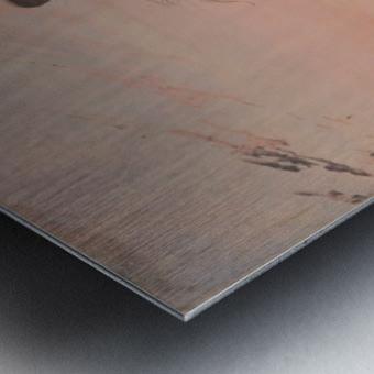 Indian Beating a Retreat Metal print