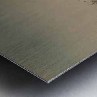 The Bravado Metal print