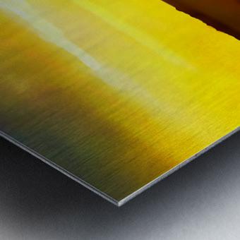 orange yellow Metal print