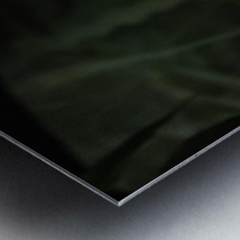 High Detail  Green Boa  Metal print