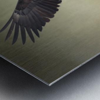 King of the Skies Metal print