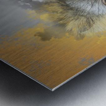 Lemurien Metal print