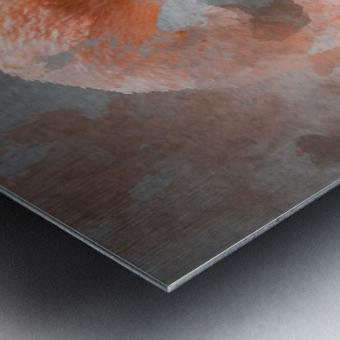 Flamant  Metal print