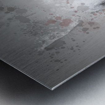 Lapin Metal print