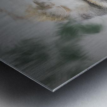 Gorille Metal print